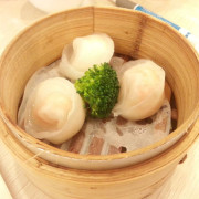 Scallop-Gow-Gee